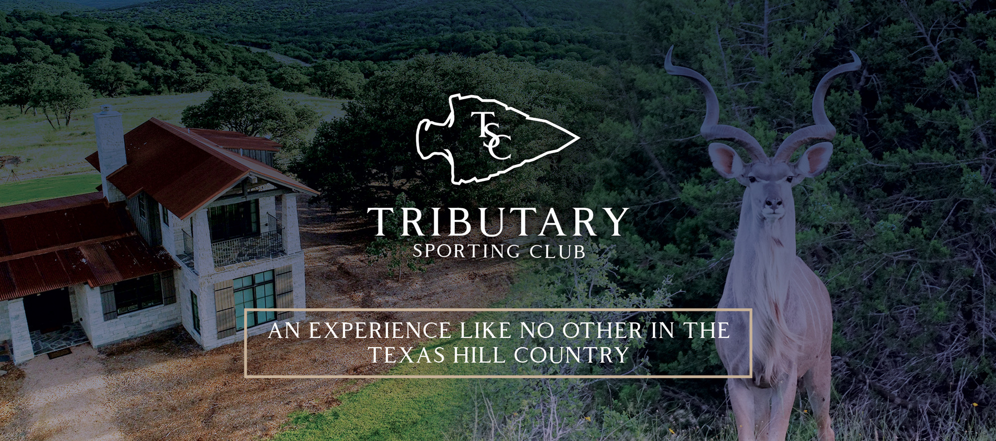 Tributary_FB_Cover